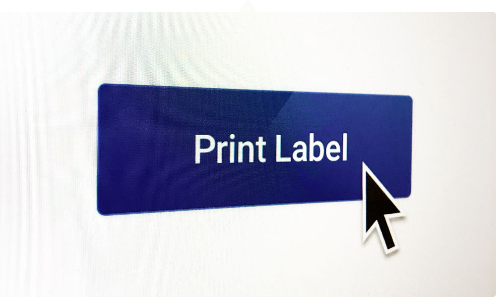 WebPrint™ makes printing easy